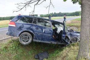 Rozbity pojazd o drzewo. W tle policjanci i strażacy